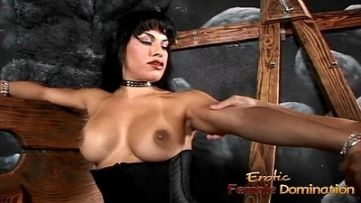 Busty tranny playgirl Foxxy makes a stud lick her latex boots